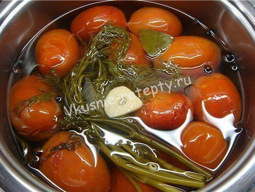 помидоры Суточные фото