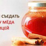 Мед с корицей — смешайте, и болезней не знайте! Эликсир долголетия