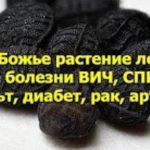 Спасает от всего, кроме смерти! Это древнее средство «лечит все болезни» ВИЧ, СПИД, диабет, рак, инсульт, артрит и многие другие заболевания