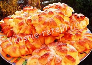 плюшки хризантемы фото